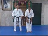 Идо кихон и ката каратэ Кёкусинкай, часть 3
